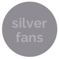 silver ceiling fans