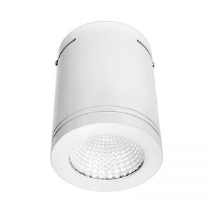 surface-mount-downlight